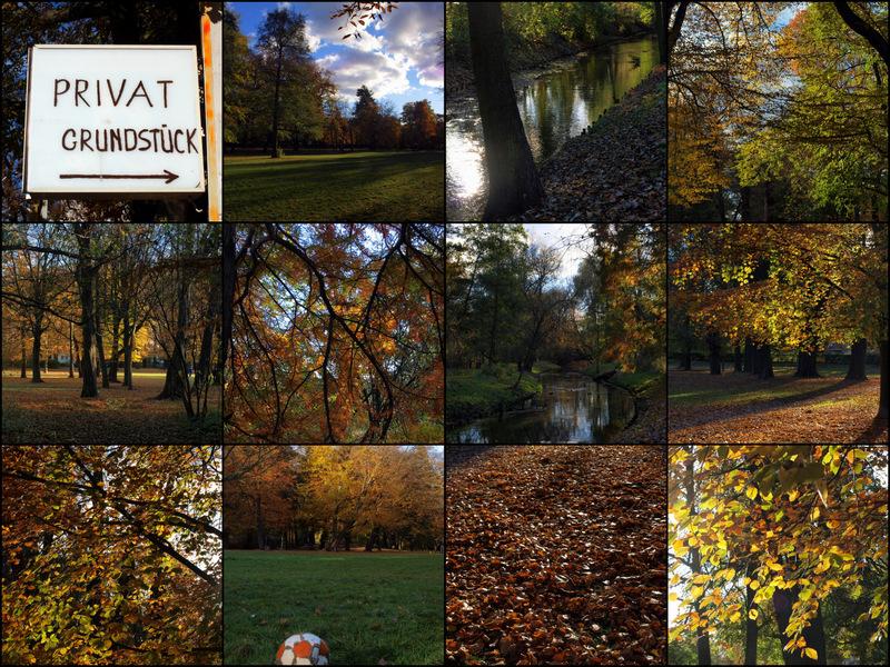 Goldene Herbstfreuden